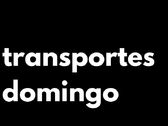 transportes domingo